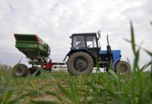 На Ставрополье финансирование создания сельхозкооперативов увеличилось в восемь раз