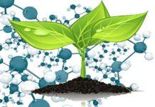 Наночастицы для сельского хозяйства