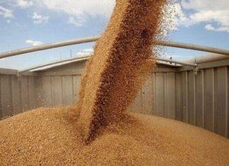 Назад к СССР_ РФ отправит зерно в виде гуманитарной помощи