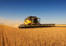 Площадь земель в сельхозорганизациях за 10 лет сократилась на 29%, у фермеров — выросла на 47%.