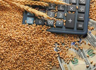 Правительство сохранило нулевую ставку вывозной пошлины на пшеницу