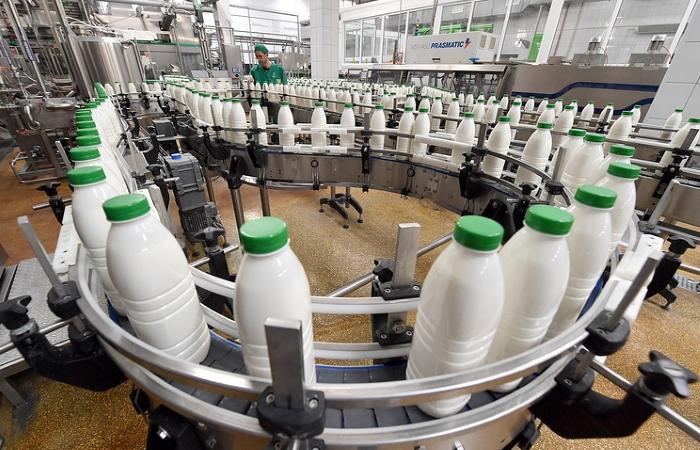 РФ и Белоруссия договорились о процедуре снятия ограничений по поставкам молока