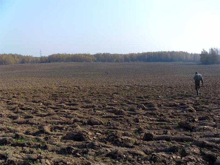 Самый холодный за 49 лет май в Западной Сибири нарушил все планы