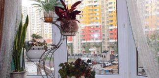 Свет для комнатных растений