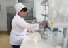 Томские ученые создали экспресс-методику определения органических токсинов в молоке