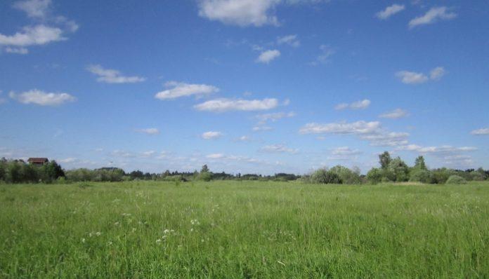 В России одобрили к выдаче «вологодский гектар»
