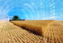 Видимость цифровизации в сельском хозяйстве