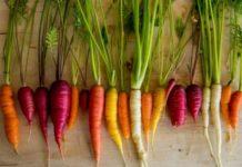Виды и сорта моркови