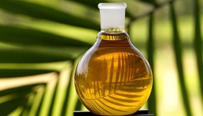 Введение квот на пальмовое масло не позволит России наращивать экспорт масложировой и кондитерской продукции — эксперт