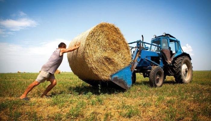 Фермеров поддержат грантами