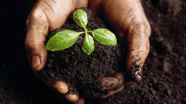 Институт почвосбережения создаётся в Белгородской области