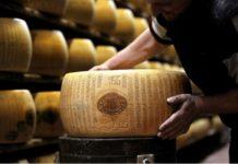 Итальянские фермеры описали масштабы понесенного ущерба от антироссийских санкций