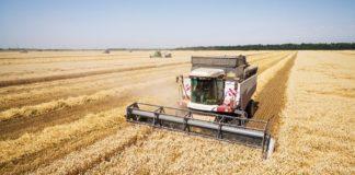 Южноуральские аграрии получили с начала года субсидии на два миллиарда рублей