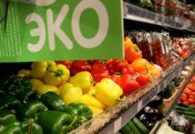 Компания из ОАЭ построит в Адыгее центр по экспорту экологически чистых продуктов