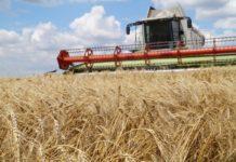 Минэкономразвития и РЭЦ запустили проект по содействию продвижению российского экспорта