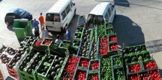 Молдавия будет добиваться полной отмены лимитов на экспорт в РФ агропродукции