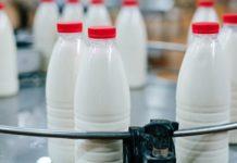 Молочный рынок России нуждается в регулировании и защите от фальсификата - Гордеев