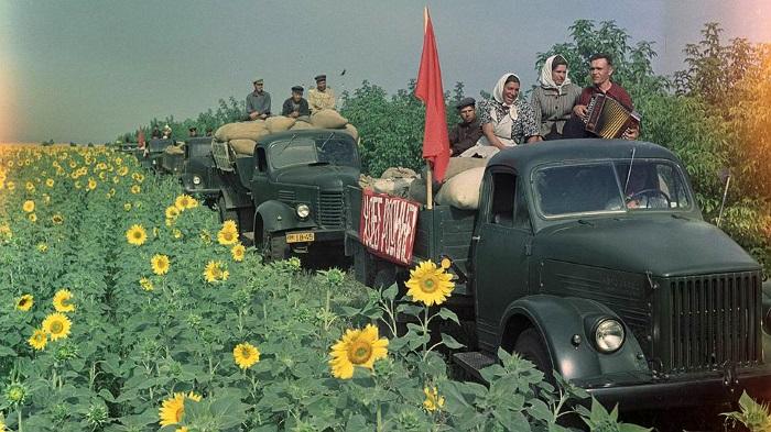 Основные характеристики колхозного строя в СССР