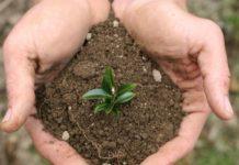 Посеешь технологии – пожнешь урожай