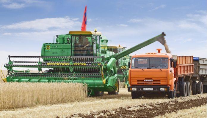 Правительство обсуждает усиление присутствия государства на зерновом рынке