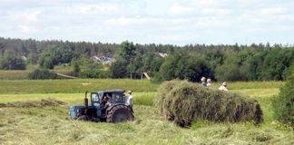 Российские сельхозпроизводители предоставят льготы на энергетические ресурсы