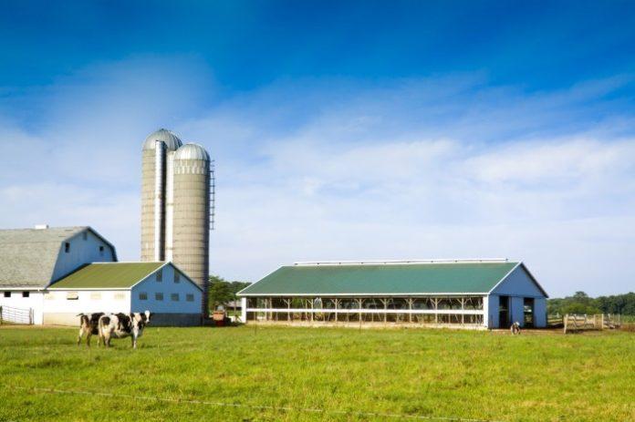 Сельхозпредприятия АПК