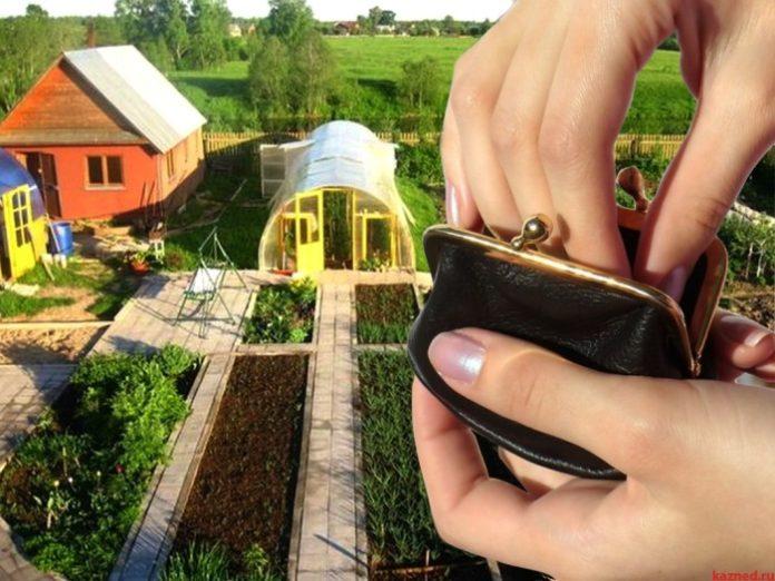 В Оренбуржье 300 тысяч личных подсобных хозяйств могут попасть под налог