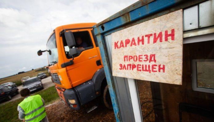 В двух районах Калининградской области выявили новые очаги АЧС