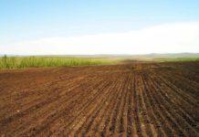 Верховный суд России поддержал запрет на приватизацию земли на Ставрополье