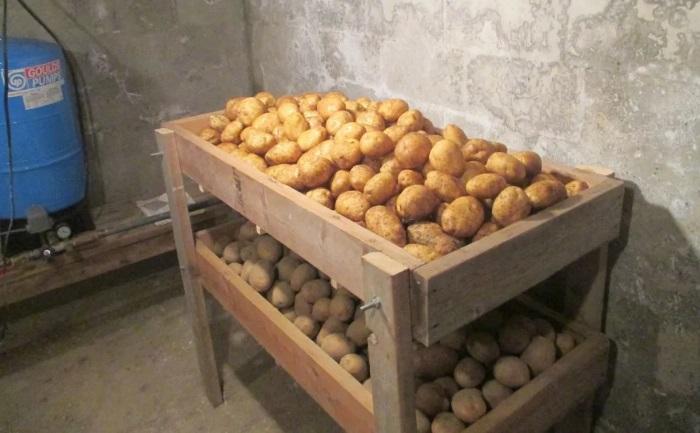 Забудьте о старых методах хранения картофеля