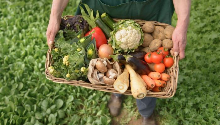 Закон об органическом сельском хозяйстве практически принят