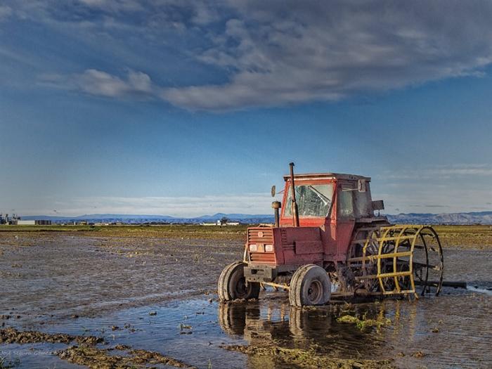 трактор рисовое поле
