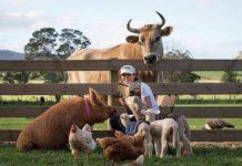 Энциклопедия болезней животных - болезни животных