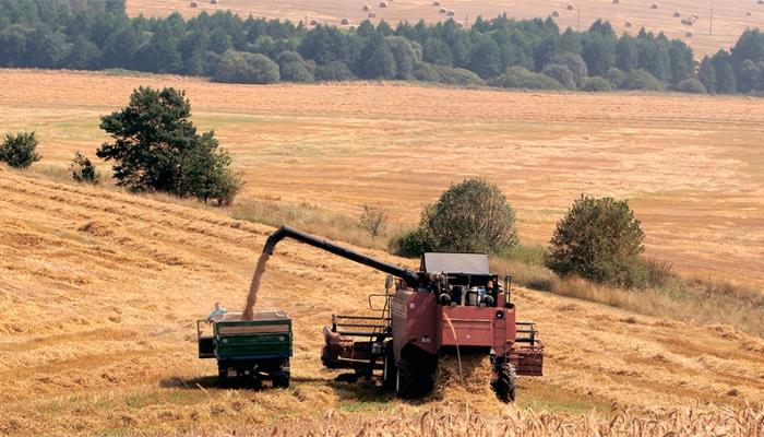 Минсельхоз России повысил прогноз урожая зерна до 105 млн тонн