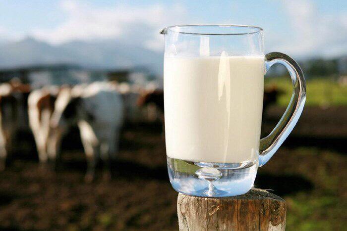 Молочный импорт снижается, но требования Доктрины продовольственной безопасности по молоку все еще не выполнены