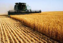 Мособлдума установила нулевую ставку единого сельхозналога в Подмосковье