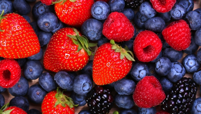 Патрушев: в 2018 году в России аграрии планируют собрать порядка 1 млн тонн плодов и ягод