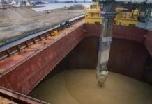 Прибалтику отсекают от экспорта российского зерна