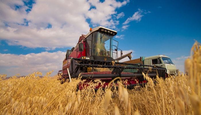 РФ в июле увеличила сельхозпроизводство на 0,9%, до 503 млрд руб