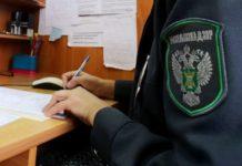 Россельхознадзор не пустил в Брянскую область 20 т сухого обезжиренного молока из Беларуси