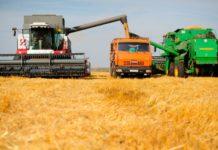 Россия заработает на экспорте зерна $9-10 млрд