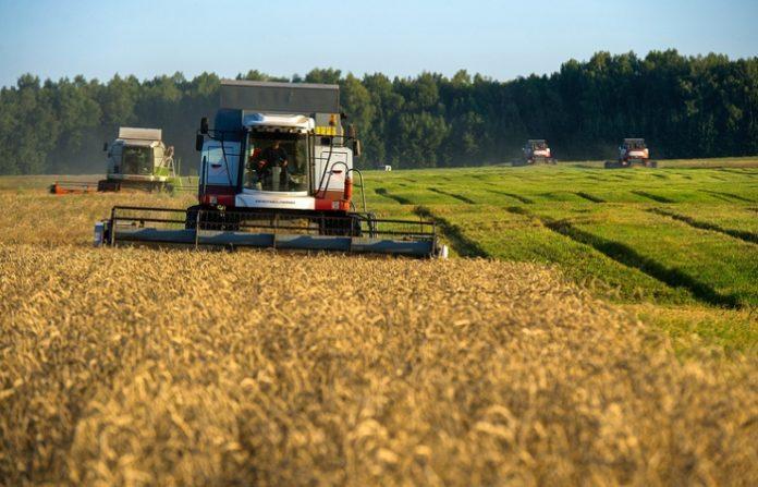 Российским аграриям предложили бесплатную блокчейн-платформу для реализации зерна