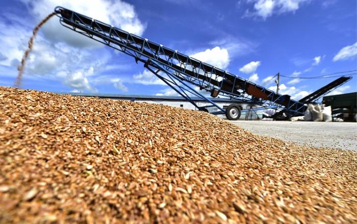 Российским аграриям предложили бесплатную блокчейн-платформу для реализации зерна 2