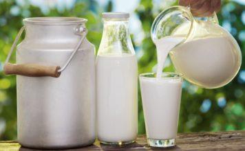 """Самарская область: """"Экопродукт"""" производит молоко высшего сорта"""