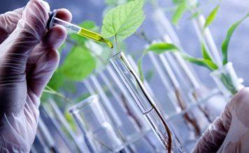 Совет по развитию биотехнологий может быть создан при правительстве