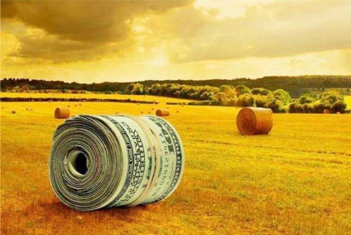 Темпы роста агросектора замедляются, считают в Минэкономразвития