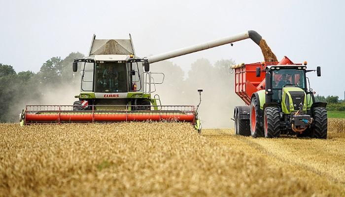 Урожай в России столкнулся с новой угрозой