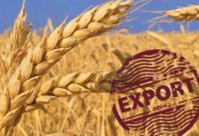 В первый месяц сельхозгода экспорт зерна резко вырос