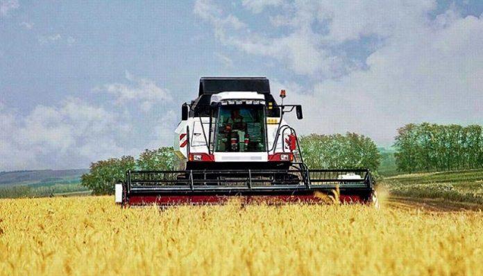 Зерна хватит: в Крыму заявили о достаточном запасе