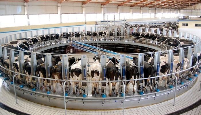Агрохолдинг «Степь» построит в Краснодарском крае ещё одну молочную ферму